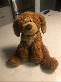 Found Stuffed dog on 17 Sep. 2019 @ Grand Haven, Michigan
