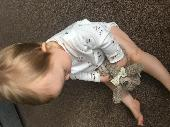 Lost Teddy bear on 16 Nov. 2019 @ Preston, fishergate. Lancashire