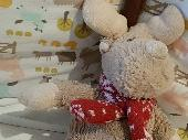 Lost Cuddly toy on 07 Dec. 2019 @ Erith, Da83QD