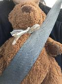 Lost Teddy bear on 01 Jan. 2020 @ Ikea Store, College Park, Maryland 20740