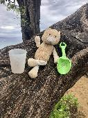 Found Teddy bear on 10 Jan. 2020 @ North Kaanapali Beach, Maui, HI