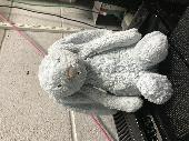 Found Jellycat bunny on 17 Feb. 2020 @ De742tn