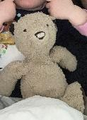 Lost Teddy bear on 23 Feb. 2020 @ Guildford