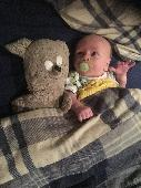 Lost Teddy bear on 16 Mar. 2020 @ Northampton