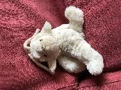 Found Cuddly bunny on 27 Mar. 2020 @ Parsons Green, Fulham