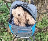 Found Teddy bear on 27 Mar. 2020 @ Shelsley Walsh WR6