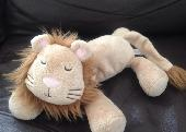 Lost Cuddly toy on 16 Jul. 2015 @ Southhampton Children's Hospital