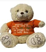 Lost Teddy bear on 17 Apr. 2020 @ Grangetown, Cardiff, Uk