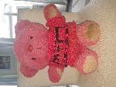 Lost Teddy bear on 06 May. 2020 @ Geelong