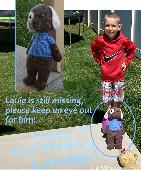 Lost Stuffed dog on 17 May. 2020 @ Weber or David county Utah