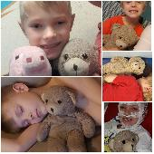 Lost Teddy bear on 28 Dec. 2019 @ Tampa international airport