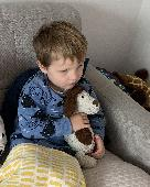 Lost Teddy doggy on 22 Jun. 2020 @ B&Q, Trafford Park, Stretford, Manchester M41 7LG