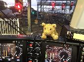 Found Cuddly toy on 15 Jul. 2020 @ Hornsby Station - Sydney