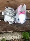 Found Cuddly toy on 26 Jul. 2020 @ Strumpshaw