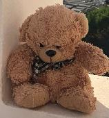 Lost Teddy bear on 23 Jul. 2019 @ Corralejo or Fuerteventura airport