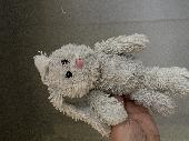 Lost Cuddly bunny on 08 Aug. 2020 @ Dublin Airport