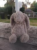 Found Jellycat bunny on 30 Aug. 2020 @ Exton, Devon