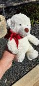 Found Teddy bear on 04 Sep. 2020 @ Schlitz Park, Milwaukee, WI