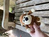 Found Toy monkey on 10 Sep. 2020 @ Cotswold Wildlife Park