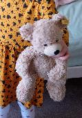 Lost Teddy bear on 07 Oct. 2020 @ Sandbrook Road, Ainsdale, Southport UK