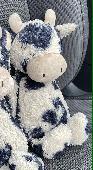 Lost Cuddly toy on 22 Oct. 2020 @ Ocean terminal, edinburgh