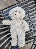 Found Teddy bear on 08 Nov. 2020 @ Union Square, Hickory, NC
