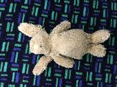 Found Jellycat bunny on 11 Nov. 2020 @ Marble Arch london
