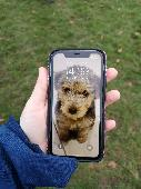 Found Phones & Tablets on 28 Nov. 2020 @ Oaks park, sutton