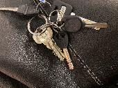 Found Keys & Cards on 07 Jan. 2021 @ Broad Walk, Hyde Park, London