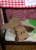 Lost Stuffed dog on 01 Nov. 2014 @ New York, NY