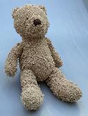 Lost Teddy bear on 04 Jun. 2021 @ Grange park, Toronto