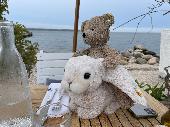 Lost Teddy bear on 10 Jun. 2021 @ Soho / Greenwich Village NYC 10012 10003
