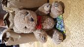 Found Teddy bear on 19 Jun. 2021 @ Gate Burton