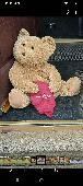 Found Teddy bear on 27 Jun. 2021 @ Marsh Way back of sunlaneBaths Wakefield West Yorks
