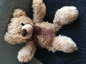 Found Teddy bear on 22 Jun. 2021 @ Kiama NSW Australia