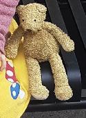 Lost Teddy bear on 28 Sep. 2021 @ Norwich