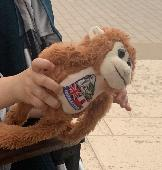 Lost Toy monkey on 21 Sep. 2021 @ London Bridge station