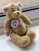 Lost Teddy bear on 09 Oct. 2021 @ The York Vikings, 12 Shambles, York YO1 7LZ
